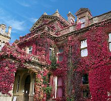 Hestercombe House by trish725