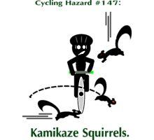 Cycling Hazards - Kamikaze Squirrels Photographic Print