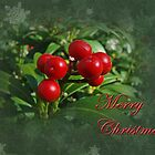 Merry Christmas Greeting Card - Holly Berries by MotherNature