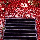 Drain Curtin University, Ektachrome by TheLazyAussie