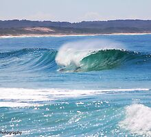 Barrel at The Entrance, Central Coast, Australia by robbirchall