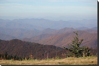 Blue Ridge Mountains by JeffeeArt4u