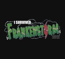 I Survived Frankenstorm by TedDastickJr