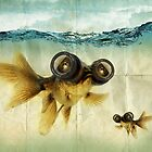Lens eyed fish by vinpez