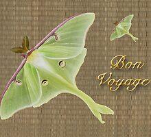 Bon Voyage Greeting Card - Luna Moth by MotherNature