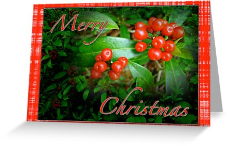 Merry Christmas Greeting Card - Honeysuckle Berries by MotherNature