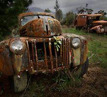 Ford Truck Graveyard by peteprue