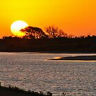 Sunset on Pea Island by Robin Lee