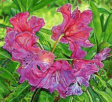 Pink Rhodo by Morgan Ralston