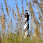 Hatteras Lighthouse by Robin Lee