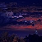 Farewell Monsoon 2012 by HDTaylor
