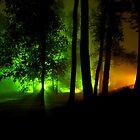 Nightfog by Scott Grinnell