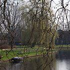 Zouterwoudsesingel, Leiden by Morag Anderson