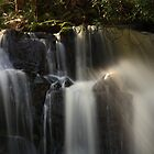 upper lilydale falls, northeast tasmania by tim buckley | bodhiimages photography