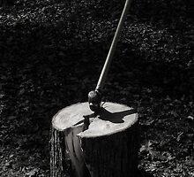 Woodsplitting by Mark  Reep