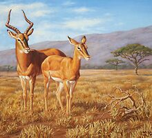 Persistence - African Impala Painting by csforest
