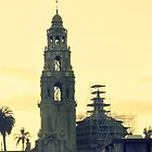 BALBOA PARK TOWER  by TYarte