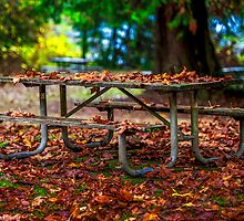 A Leafy Blanket For A Picnic Table - Flaming Geyser State Park  by Vincent Frank