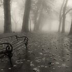 Bench... by Ilcho Trajkovski
