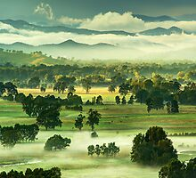 Autumn morning, Ovens Valley by Kevin McGennan