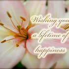 Wedding Happiness Greeting Card - Lilies by MotherNature