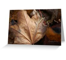 When Leaves Fall Greeting Card