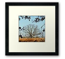 Bearing the Weight of Sky and Clouds.... Framed Print