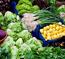 Fresh Organic Vegetables  by Kuzeytac