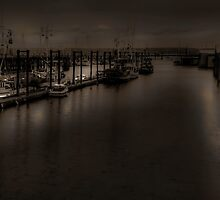 Midnight Watch by Steve Walser
