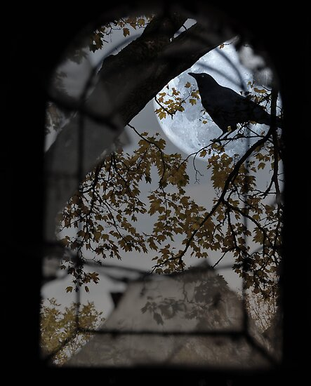 The Raven by MarieG