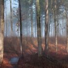 Foggy Forest, Jordan Lake, NC by Denise Worden