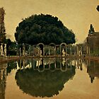 Reflections Throughout the Ages-Villa Adriana, Italy by Deborah Downes