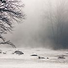 Morning Fog & River Rocks, Haw River, NC by Denise Worden