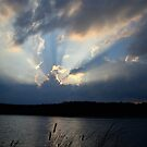 Rays From Heaven by Kathy Baccari