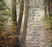 Trust-Prov. 3:5,6- Biblical by vigor