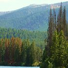 Pettit Lake - Stanley, ID by CADavis
