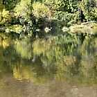 *(Please View Large)* Fall on the Umpqua River by Jess Meacham