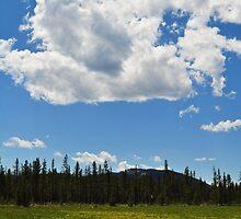 Meadow - Stanley, ID by CADavis