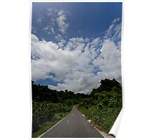 Landscape and tarmac road, Vanuatu, South Pacific Ocean Poster