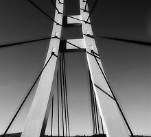 bridge by bogfl