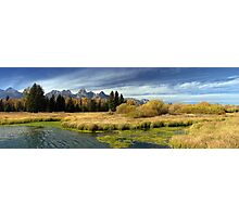 Golden Marsh Grasses, Teton Panorama Photographic Print