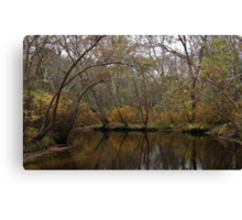 Riverwood Golds Canvas Print