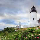 The Beauty of Pemaquid by Lori Deiter