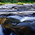 Siuslaw Swirl by Marcus Angeline