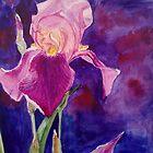 Iris flower by Victoria  _Ts