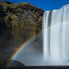 Skogafoss  by Andrew Dickman
