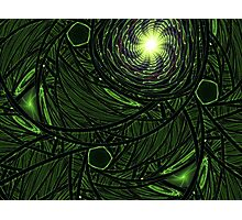 Green Frost Photographic Print