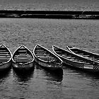 Resting Canoes by Rob Atkinson