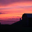 Texas Sunset by Donna/Lars Tovander