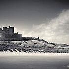 Bamburgh Castle Northumberland by Phillip Shannon